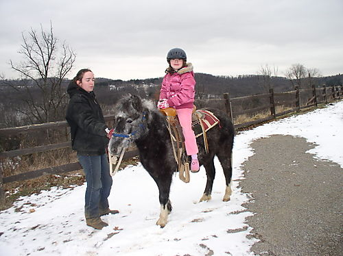 Gabi on a pony