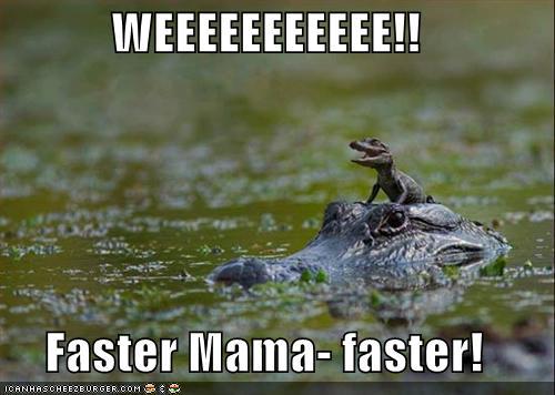 Speeding reptiles