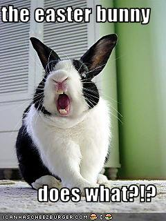 Screaming lol bunneh