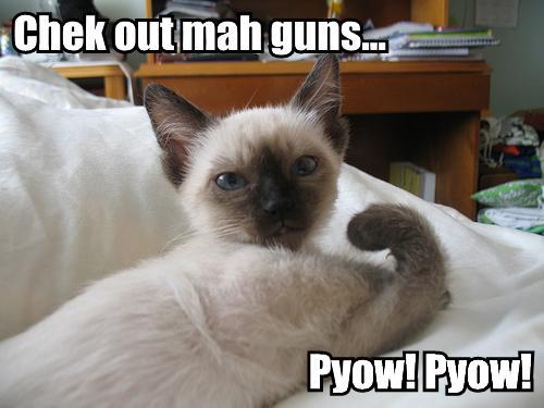 Mah guns