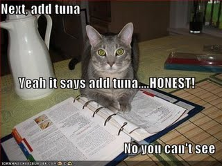 Everything is better with tuna
