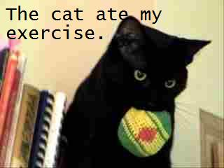 Lolcat ate my workout