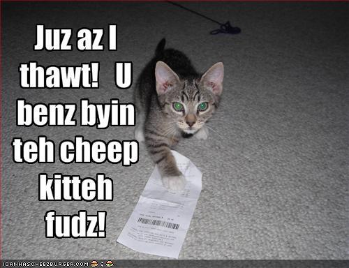 Cheep_kitteh_fudz