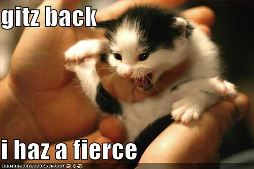 I has a fierce