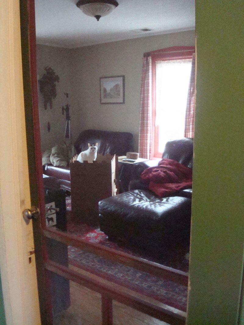 Pinchita and Leos room
