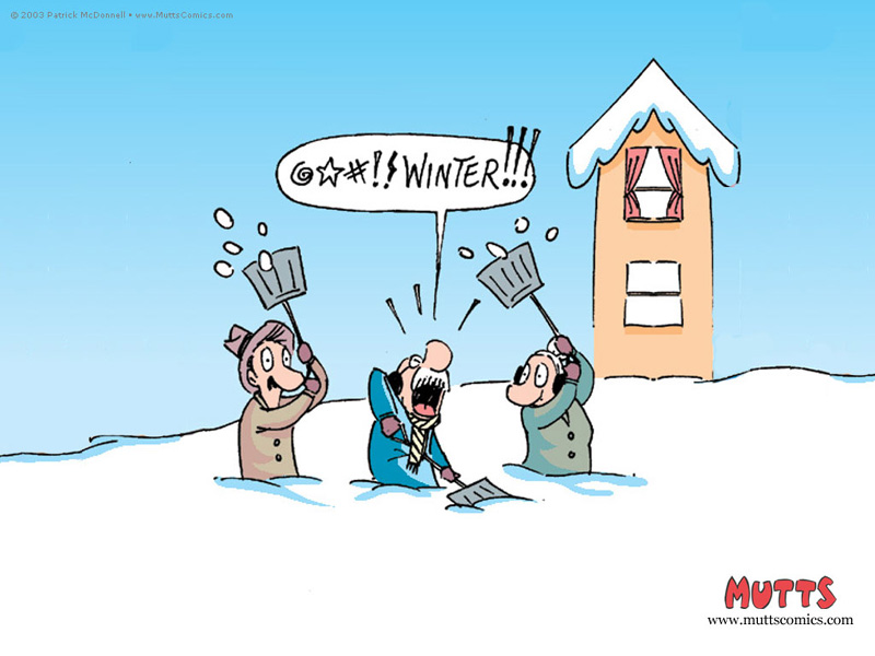 Mutts_winter_2