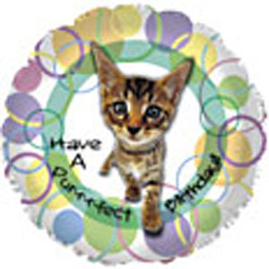 Have_a_purrfect_birthday